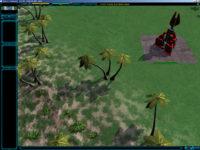 palmtrees04